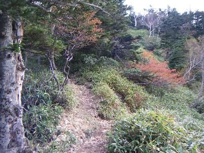 10 温泉ヶ岳・根名草山-9