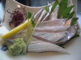 銀たちの郷 太刀魚の刺身