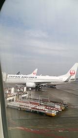 羽田空港 JAL