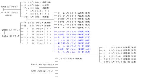 20180912家系図