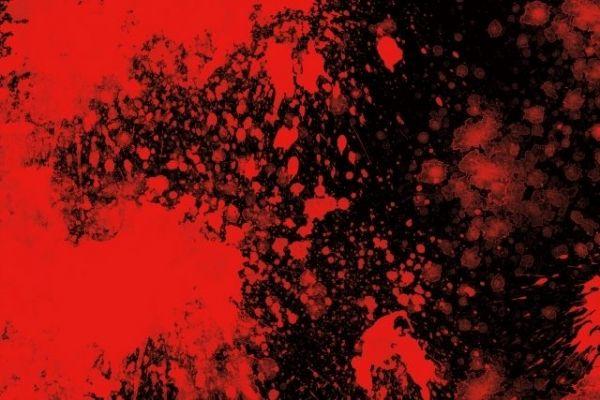 【ロシア】人間の血液から「電気」を取り出す方法を開発…血液発電の時代が来るな