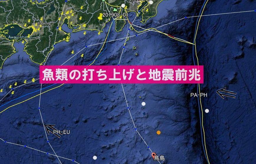 【前兆】鳥島北方でM4.7の地震~静岡県のクジラ打ち上げに対応か?+魚類の打ち上げと大地震の関係