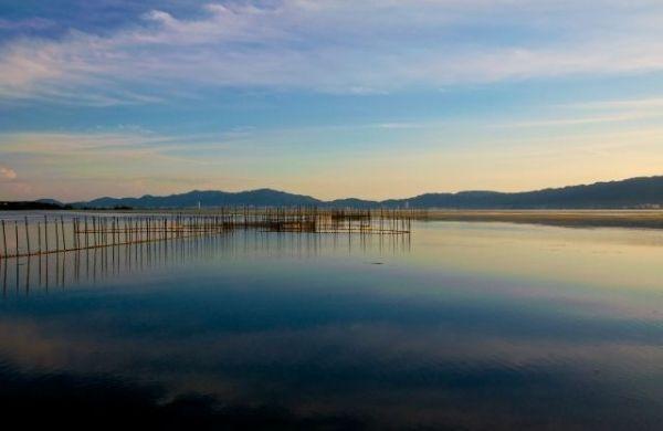【異変】 琵琶湖から「鮎」が消える…漁師「45年やってて初めて、最悪や」