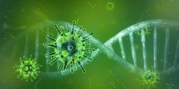 新型コロナ「肺と脳にダメージを与えます。永久的に体内に残ります。何らかの後遺症が残ります」