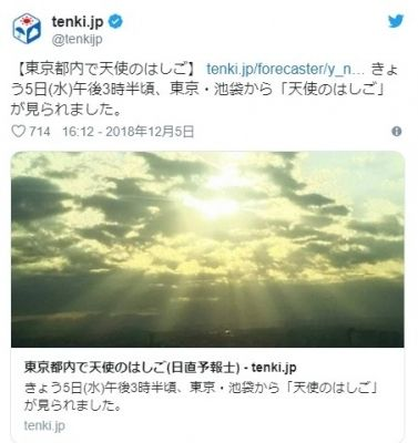 【薄明光線】東京都内で「天使のはしご」…放射状に光が射して地上へ降り注いで見える現象