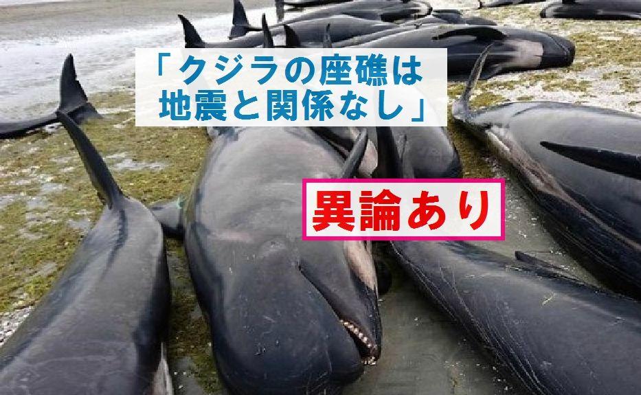 【TOCANA】「クジラの座礁は地震と関係なし」に反論する~地震前の座礁事例をデータで示す