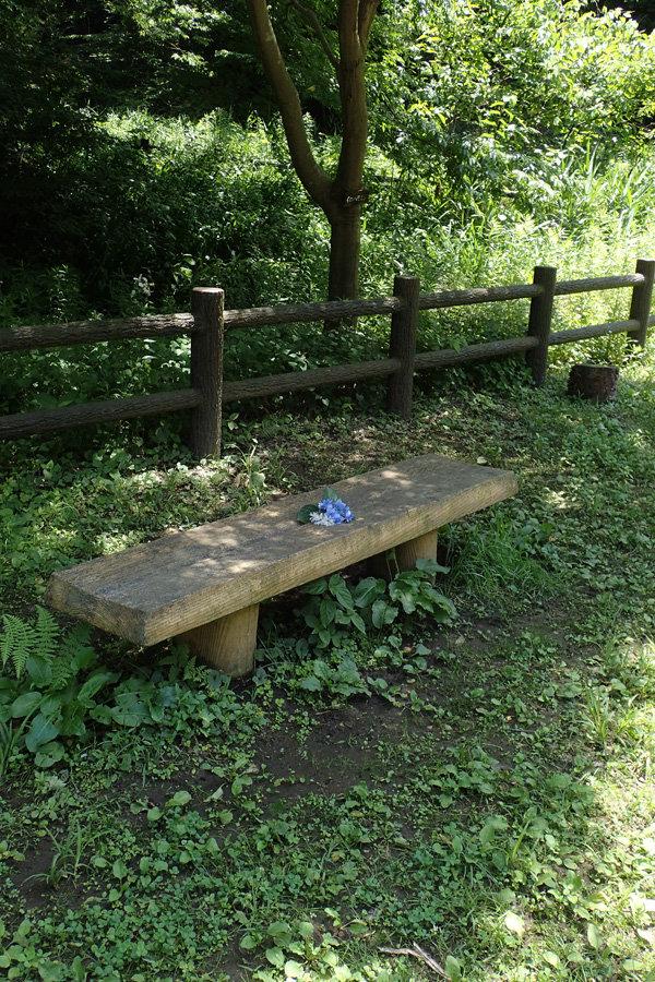 06261256_hanamusi-bench