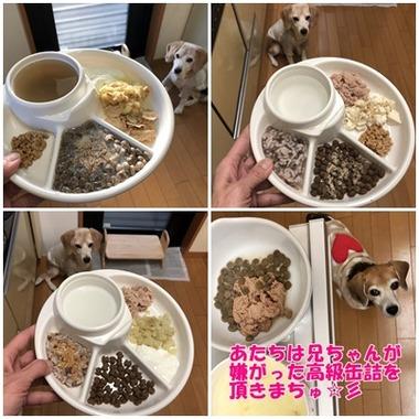 ガオ定食3