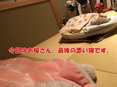 IMG_4623
