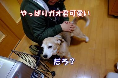 2016_1211_10112800