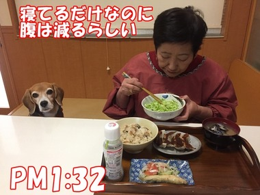 IMG_9557
