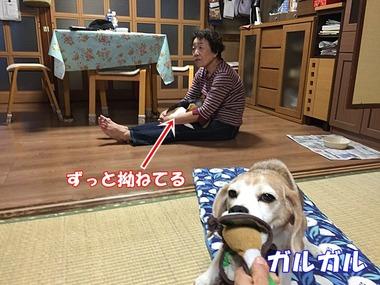 IMG_6642