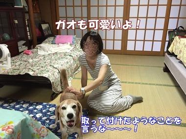 IMG_6479