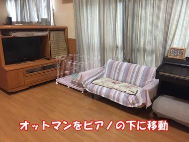 IMG_5565