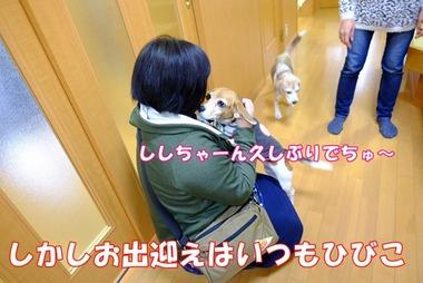 2016_1211_10062200