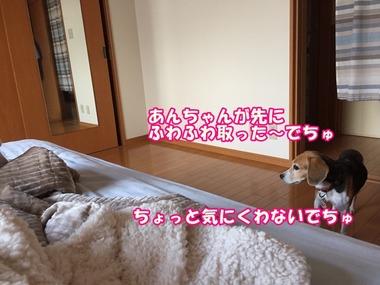 IMG_5028
