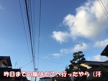 IMG_8384