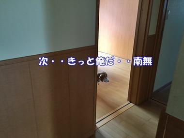 IMG_4078