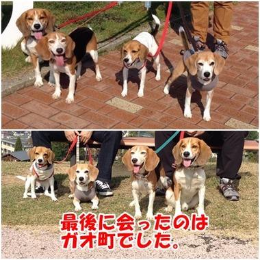 2013年金沢