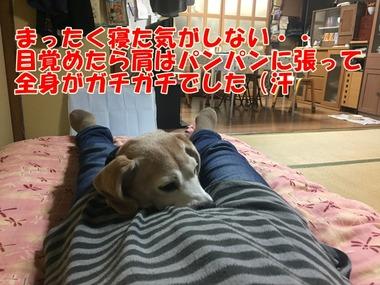 IMG_7709