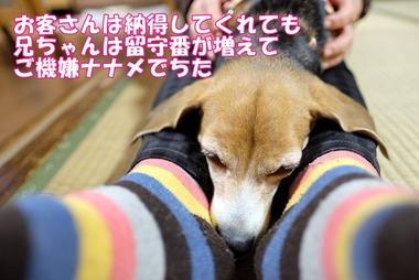 2016_1211_15143500