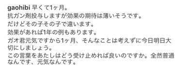 IMG_8542 - コピー