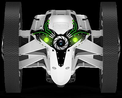 parrotsumo-white