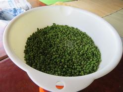 4山椒の実の下処理