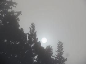 朝の太陽2