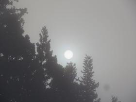 朝の太陽1
