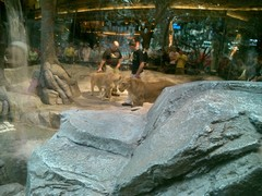 MGMライオンH1