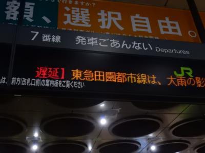 DSCN8805_R