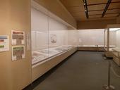 横浜市立大学コレクション古地図の世界
