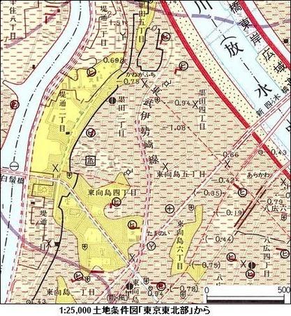 03-3 土地条件図