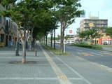 駅前通り並木道