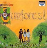 021901sunforest