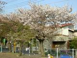 040902motomachi