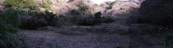 teramae1