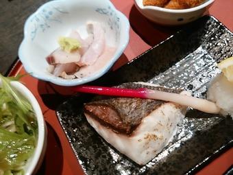 新橋 やひろ丸  ランチ 日替り焼魚定食