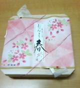 崎陽軒 カレッタ汐留店 おべんとう春 包装