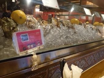 新橋オストレア ostrea 牡蠣