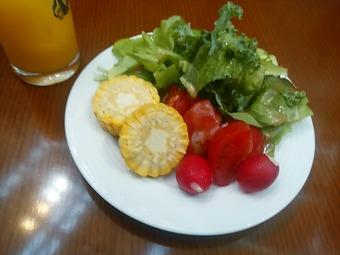 汐留 ベファーナ ランチ サラダ
