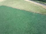 大厚木カントリークラブ 本コース ティーグラウンドが人工芝