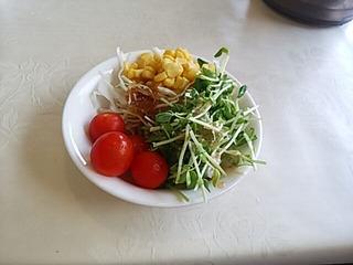 阿蘇リゾートグランヴィリオホテルゴルフ場の昼飯 サラダ