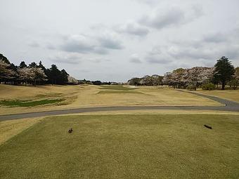 ザロイヤルゴルフクラブ The ROYAL ロングホール