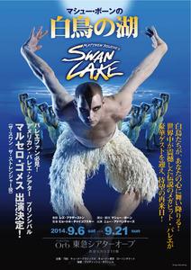 swan2014jpflyer表