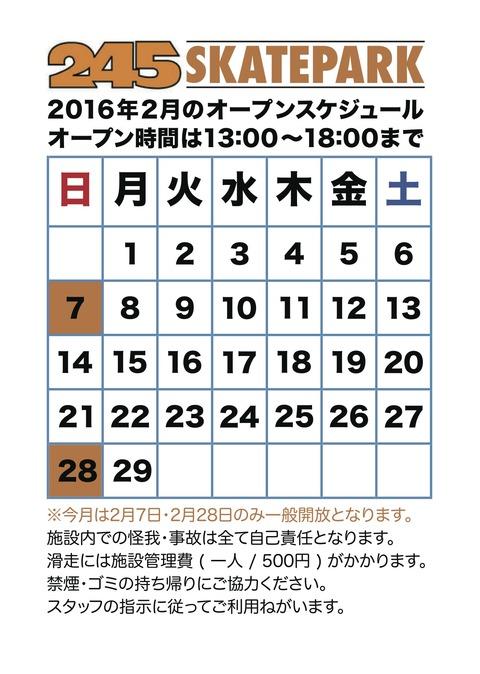 245 SKATEPARK / 28.FEB.2016