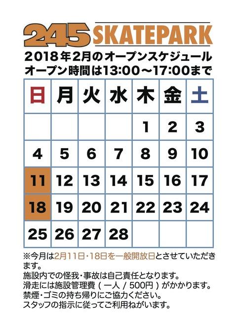 245 SKATEPARK / 18.FEB.2018