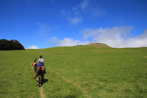 乗馬はやっぱりハワイ島がいい 5
