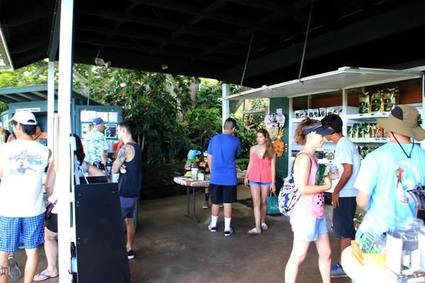 ハワイ グリーンウェルファーム おいしいコナコーヒー 2